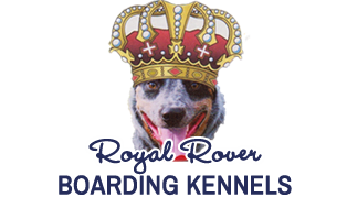 Royal Rover